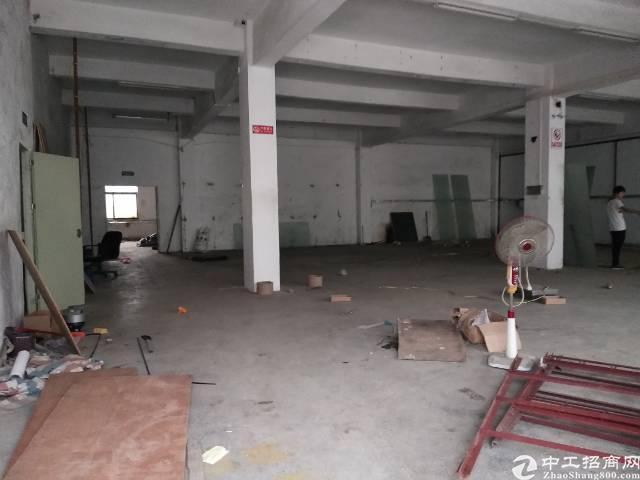 沙井一楼800平米带装修厂房出租