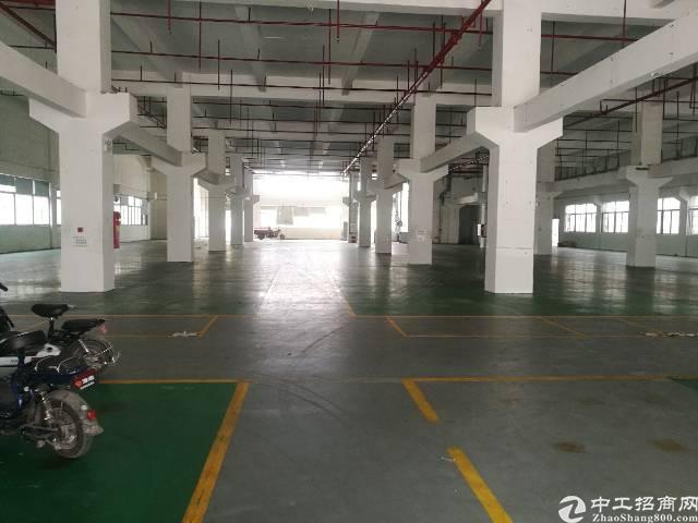 塘厦大型工业区 高新技术园 整栋出租