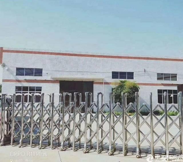 惠东白花谟岭工业园单一层3300钢构厂房出租