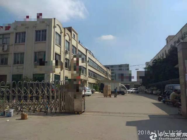 长安镇乌沙新出原房东厂房出租1-3楼4500平方,无公摊