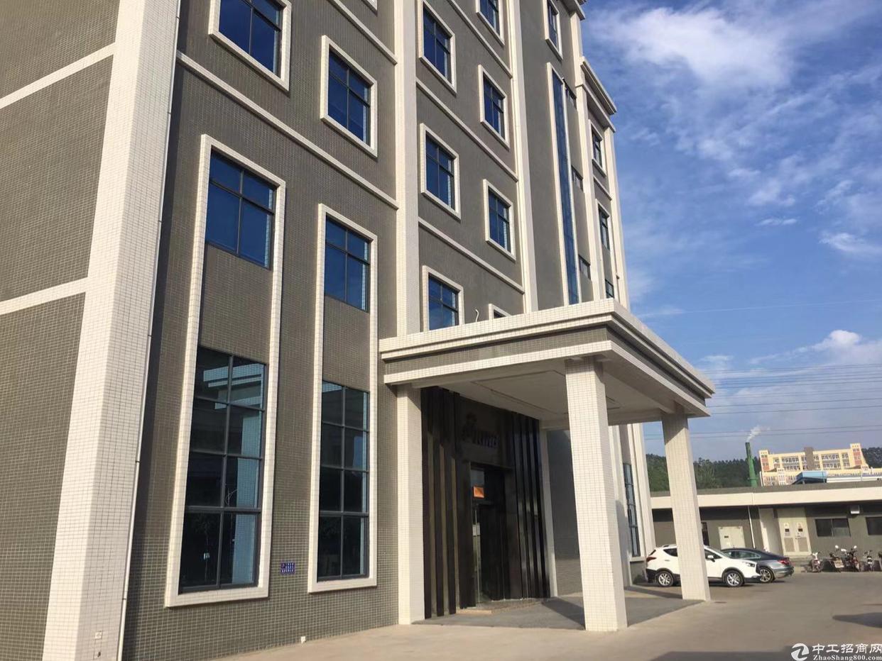 惠州仲恺惠环工业园标准厂房4800平方米可分租