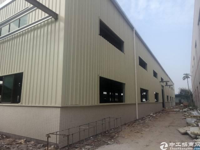 茶山镇全新钢构厂房出租