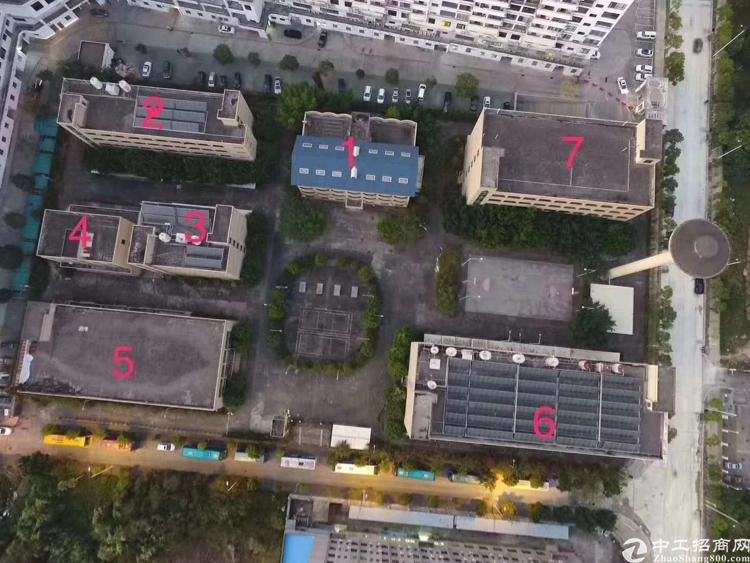 深圳坪山原房东独院厂房出租25000平方、也可以分租