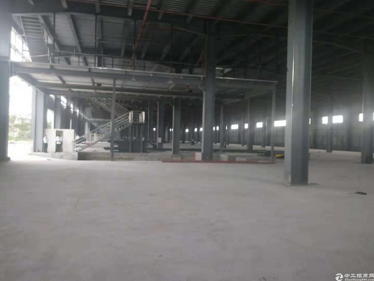 西乡固戍南昌公园旁独门独院全新钢构出租,租金45元月