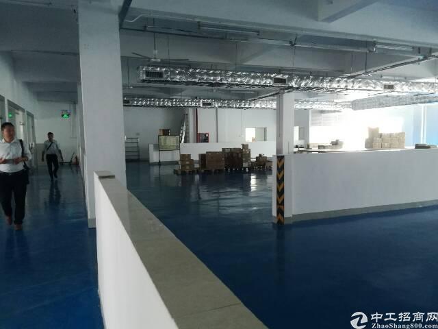 新厂房,精装修,无转让费楼上1000平方厂房出租-图4