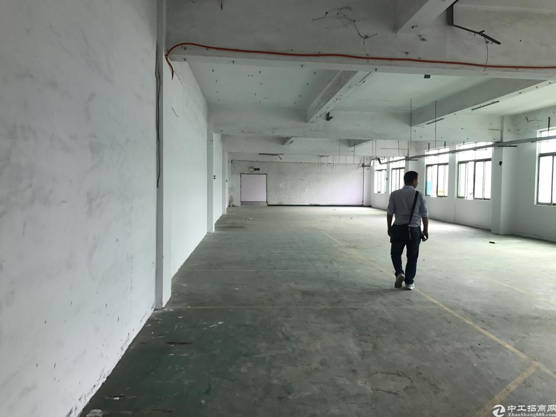 福永凤凰国道旁新出楼上750平方米带装修免转让费出租