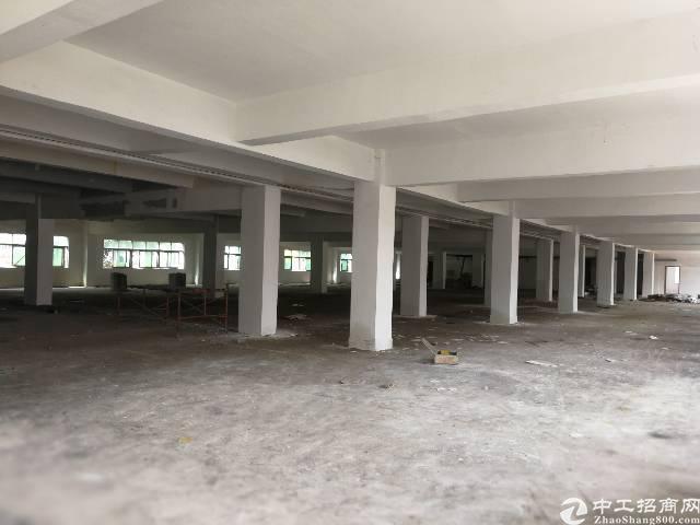 龙华布龙路边上新出一楼600平仓库带装修