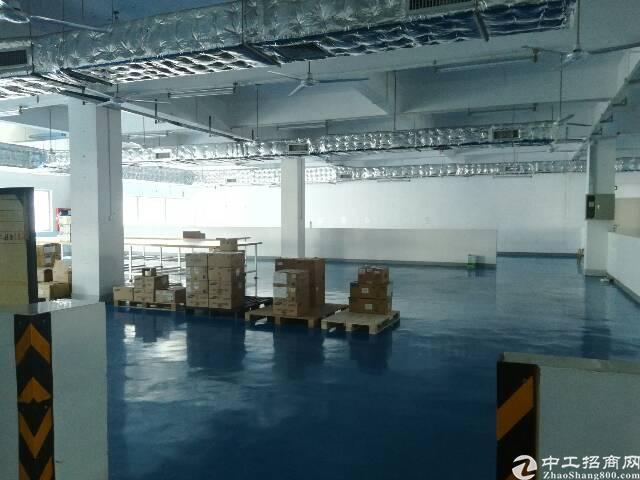 新厂房,精装修,无转让费楼上1000平方厂房出租-图5