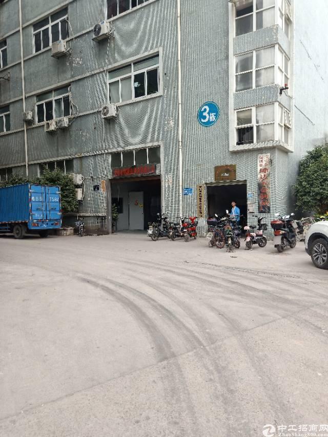 深圳石岩松柏路大型工业园
