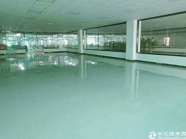 惠州市惠阳三和经济开发区新出独院标准厂房招租-图3
