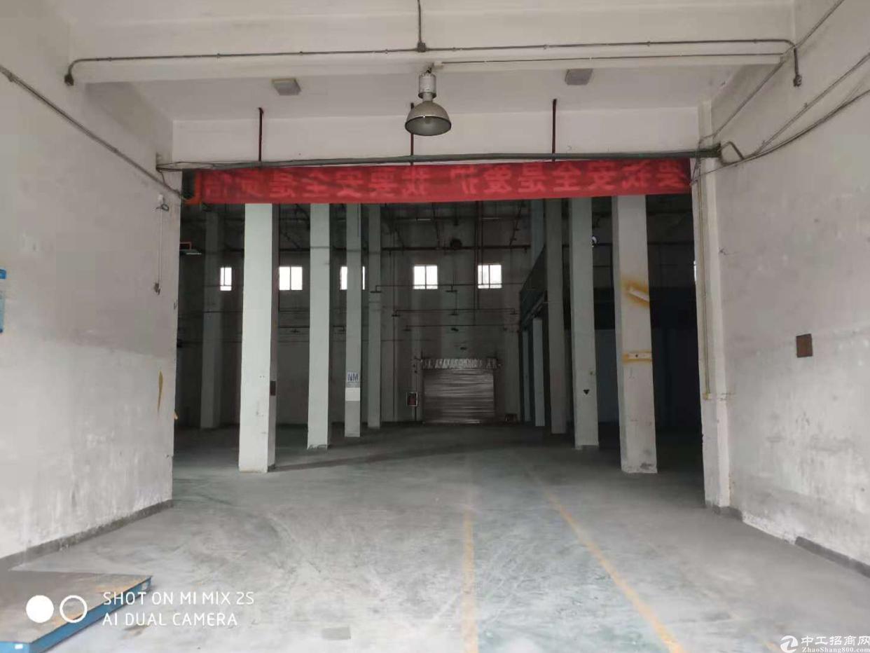田寮2800平方10米高单一层厂房出租