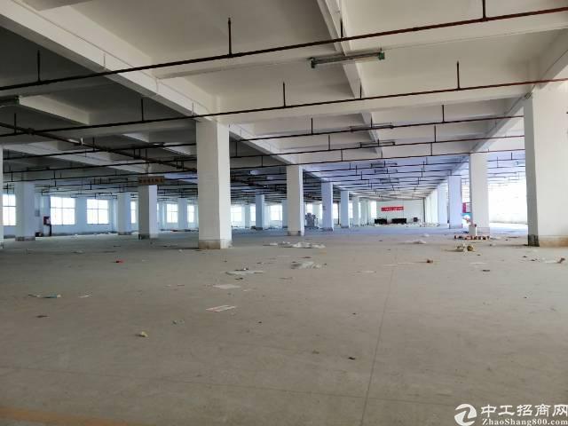 布吉主干道边靠华南城4000平方红本带消防喷淋厂房出租