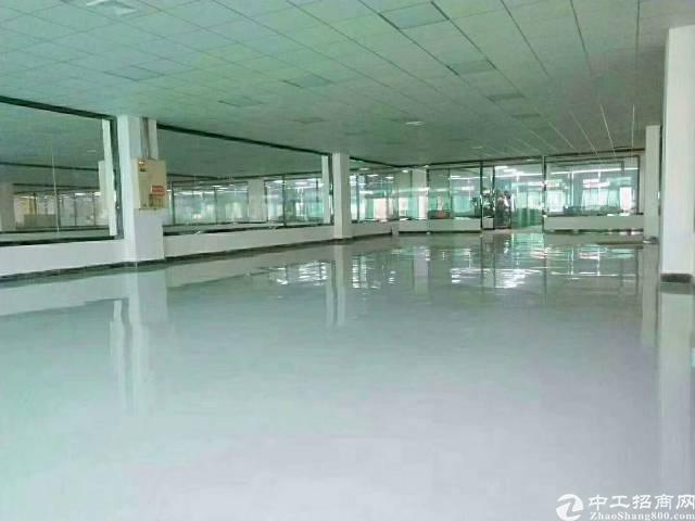 惠州市惠阳三和经济开发区新出独院标准厂房招租