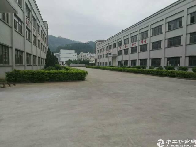 福海街道独院厂房整租,新和高新园区 B1栋1-5层共1648