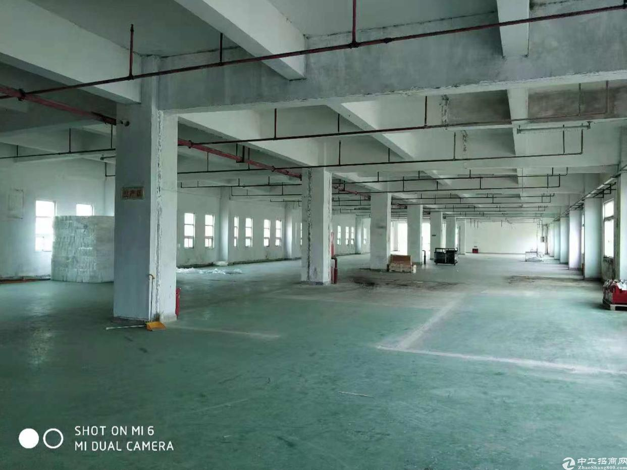 龙岗新生龙岗大道边原房东2楼800平标准厂房