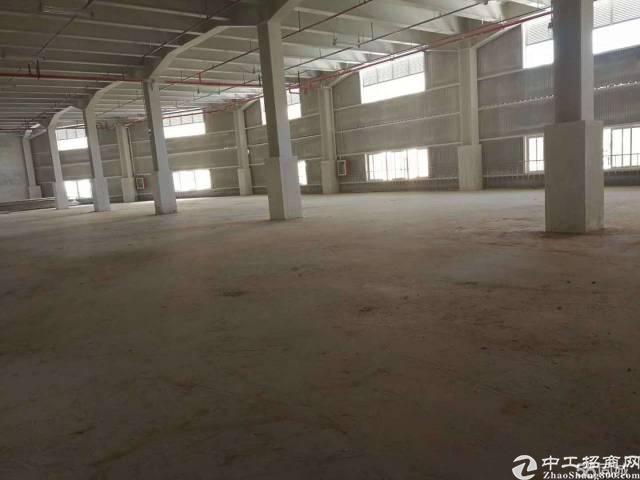 横岗西坑仓库5000平方招租