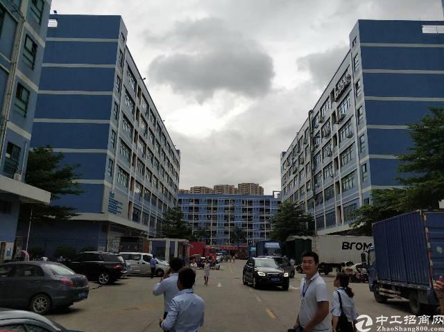 西乡固戍大门大型工业园1800平厂房出租