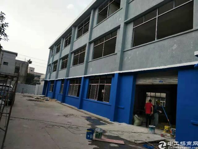 新田独门独院厂房3000平方出租