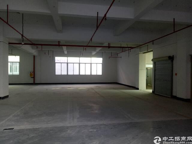 沙井镇大王山工业区楼上整层1500平米原房东出租