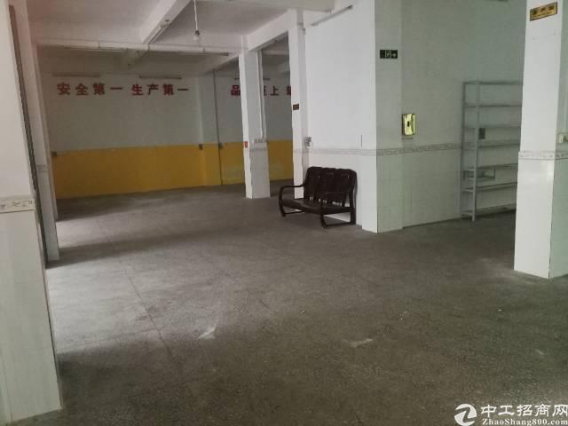 惠州惠城区小金口新出独栋2500平万博app官方下载出租