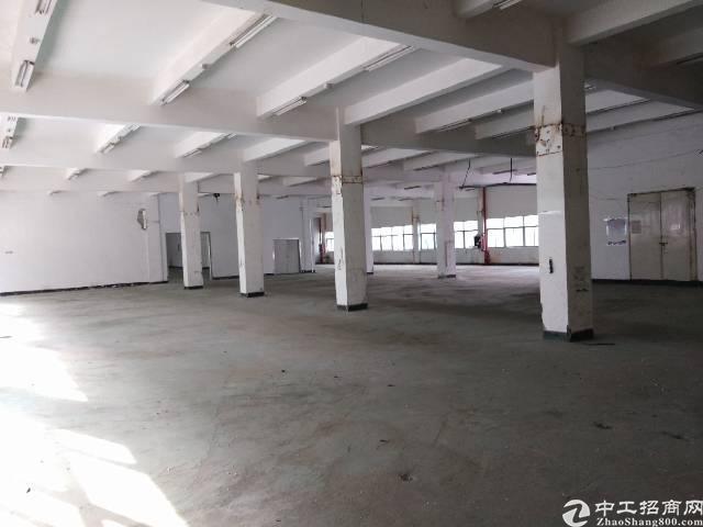惠城区水口镇,价格低,九成新厂房出租