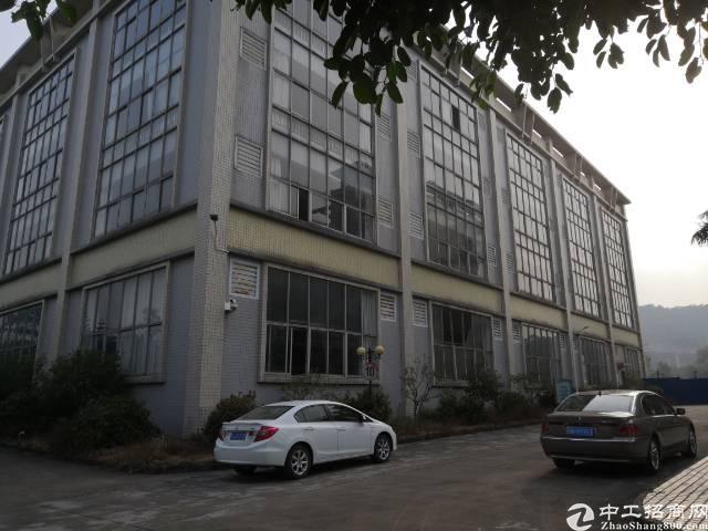 石排镇中心工业区标准厂房出租二楼1800平方米,价格优惠