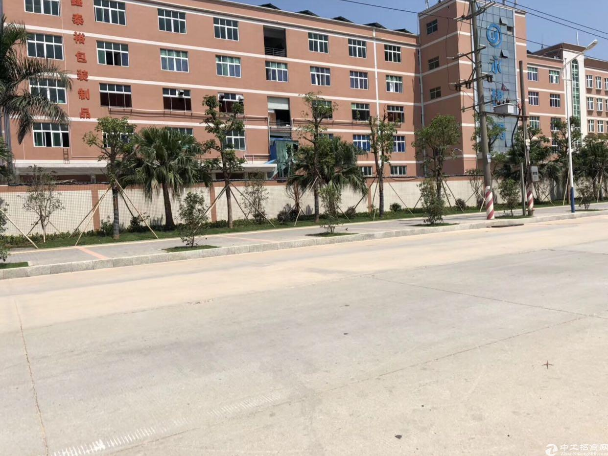 松岗龙大高速路口新出原房东带红本3300平方米厂房招租