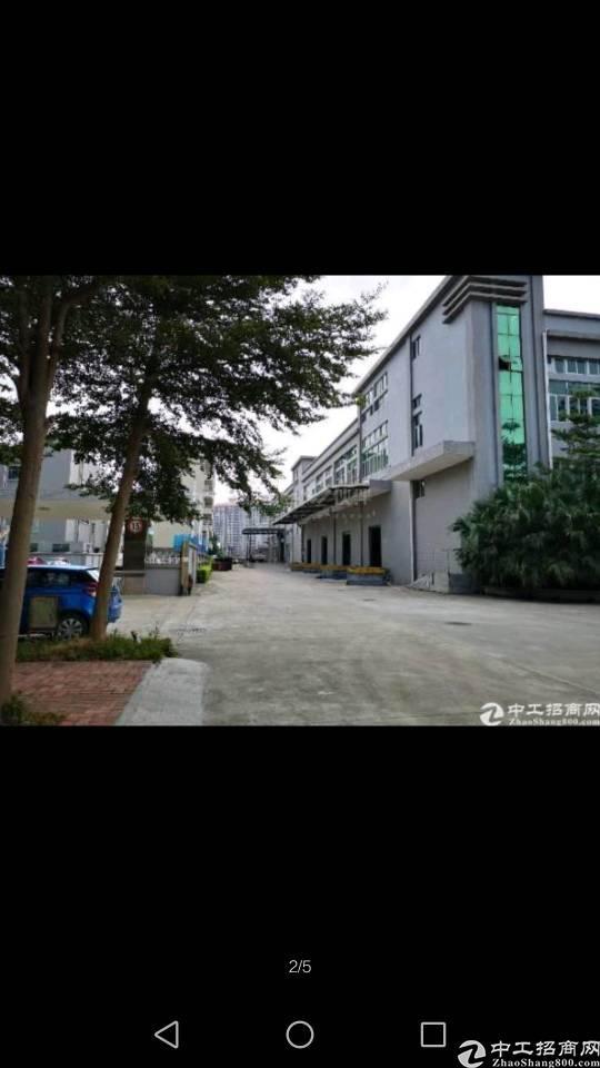 广州3100平不动产超长年限47年厂房出售