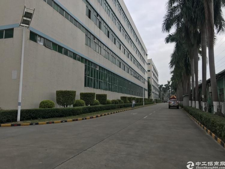 宏发科技园 一楼2500平招租 带卸货平台