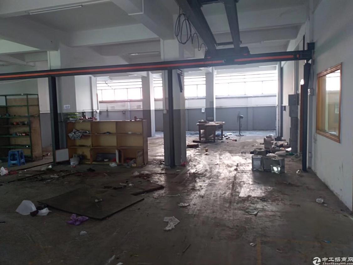 新出一楼300平方米厂房