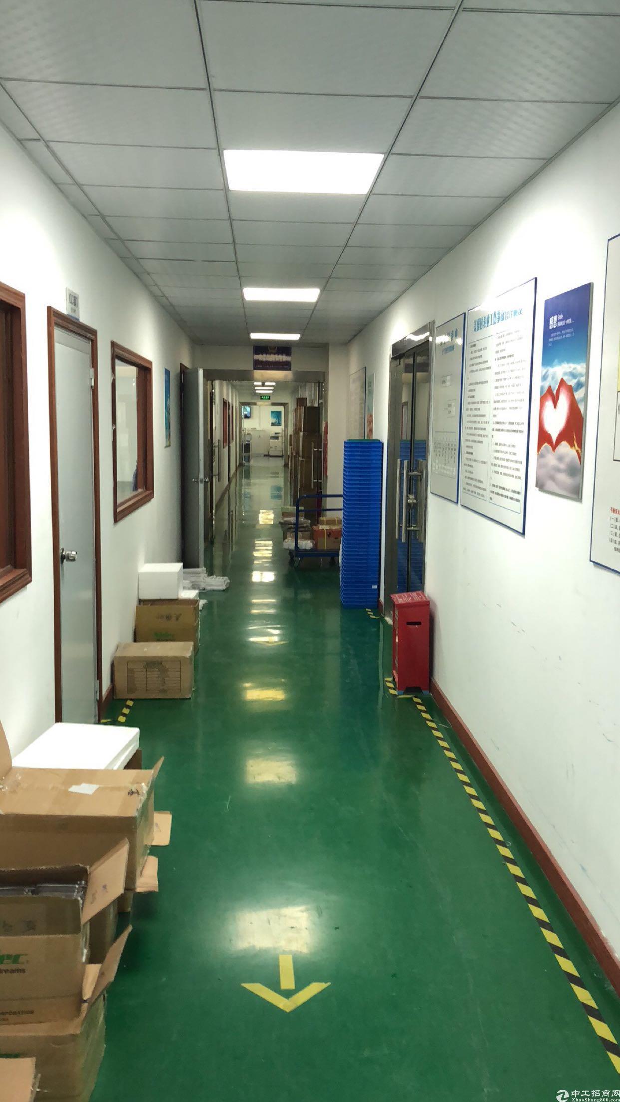 龙华办公加仓库出租总共600平米 位于龙大高速出入口
