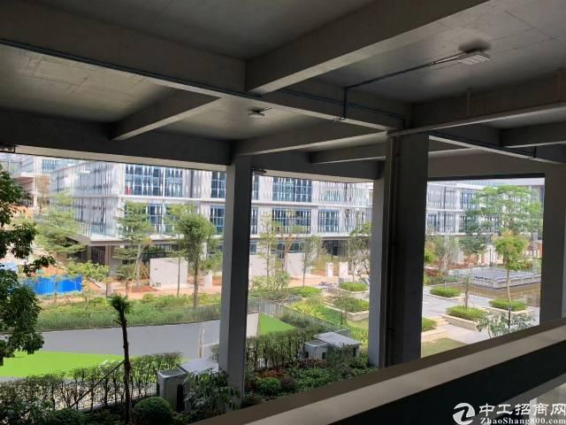 大岭山镇高新科技园出租20000平方可以分租