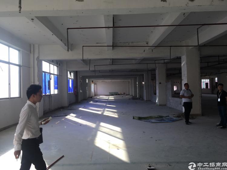 棠下镇成熟工业区1600平方厂房出租,电100千瓦