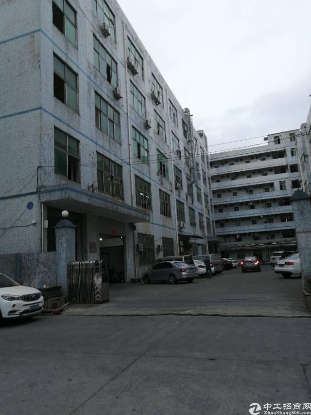 凤岗新出一楼900平米带航车带地坪漆带办公室标准厂房