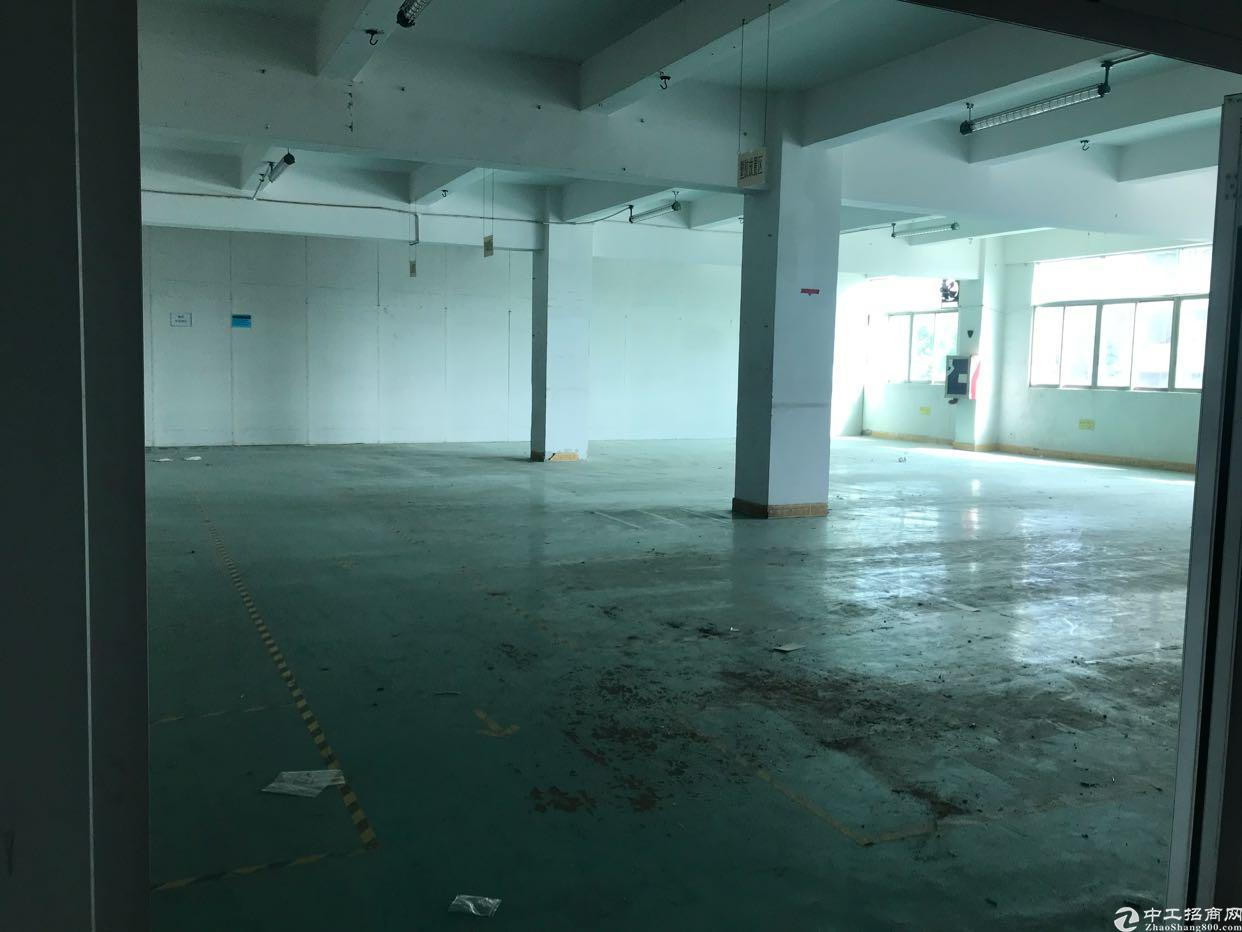 松岗燕川新出原房东实际面积出租楼上带装修1700平-图6