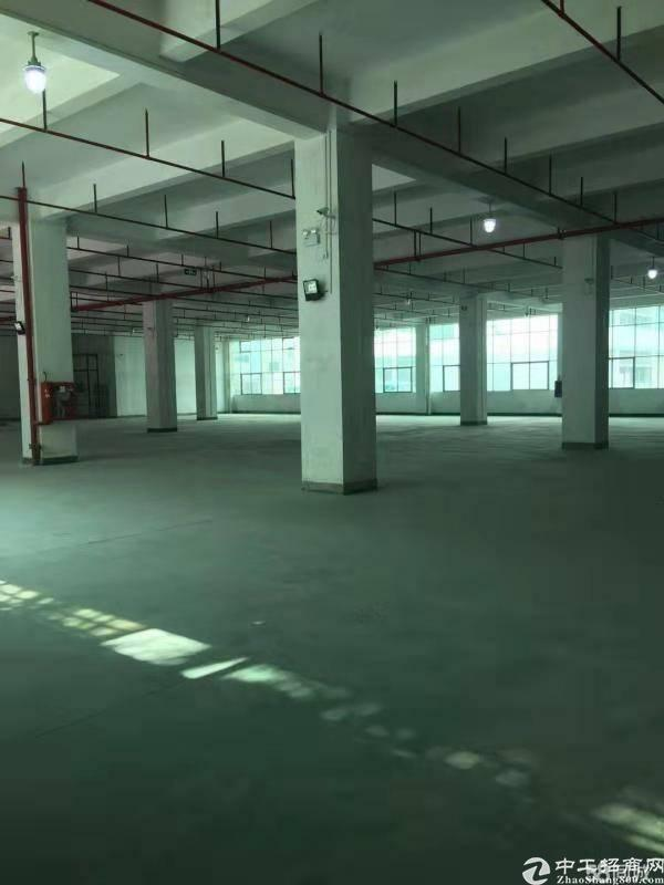 石岩塘头原房东带消防喷淋一楼2300平招租
