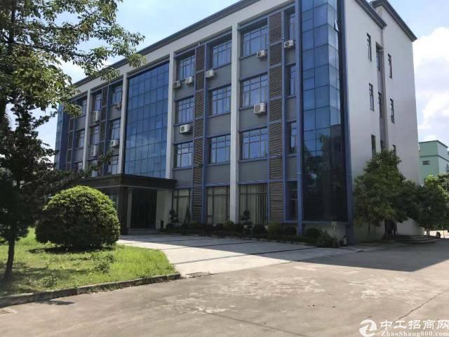 茶山京山工业区高档装修楼上一层招租