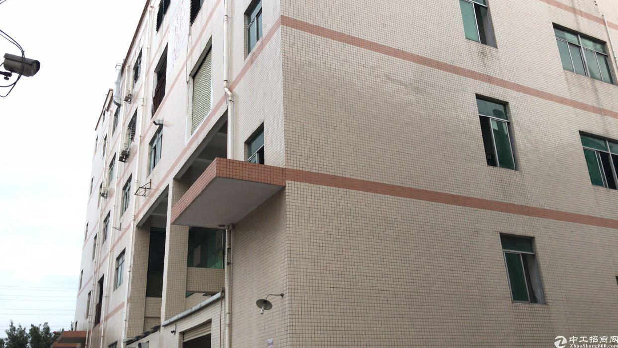 松岗国道边新出一楼200平厂房实际面积出租