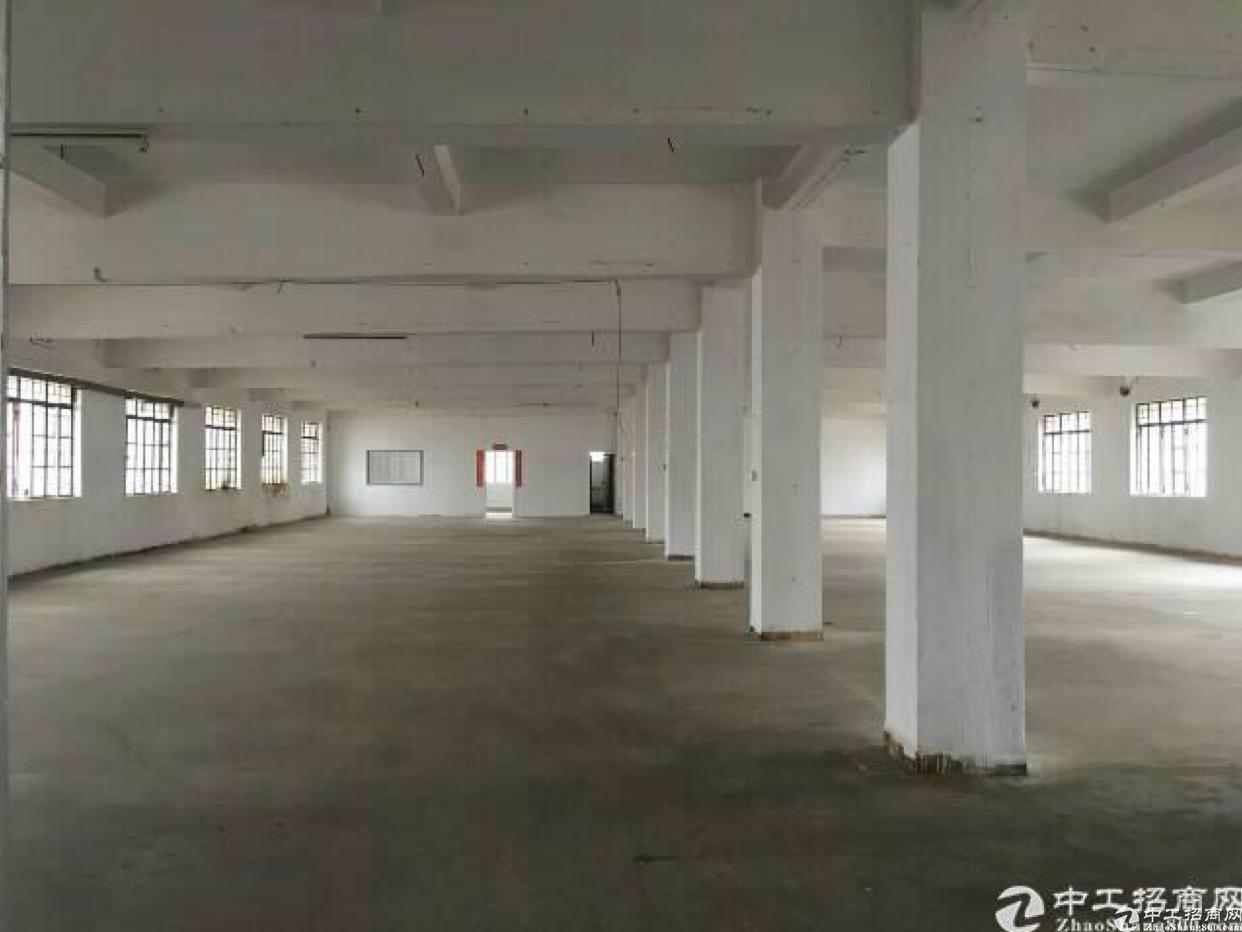 布吉新出标准厂房1500平出租