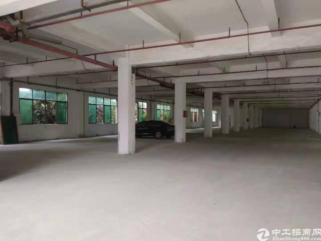 南城工业园分租厂房1000平方带2吨货梯