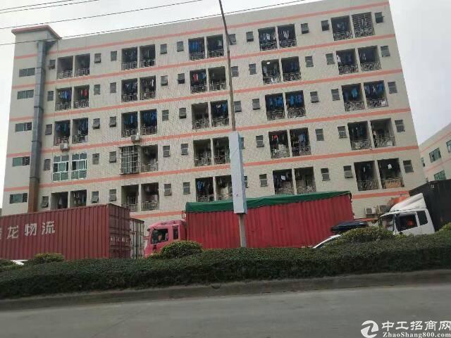 虎门沿江高速附近整栋宿舍楼出租,可包租做公寓