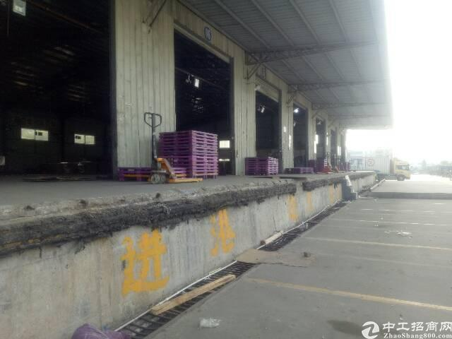 龙华新出标准带卸货平台物流仓库4500平
