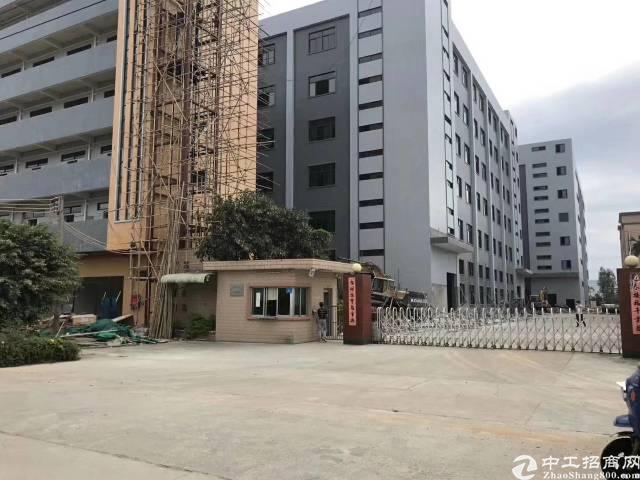 广州原房东独院厂房可以分租可办各类环评