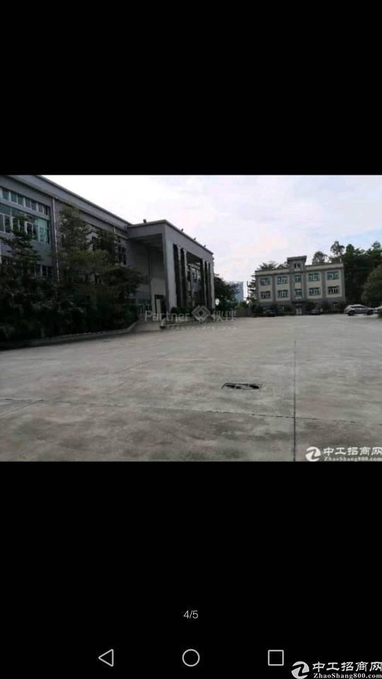 企石镇占地面积8600平建筑面积9300平村委厂房出售