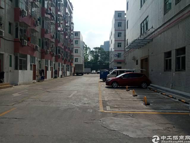 南岭可园旁新出1100平1楼厂房,楼层高,空大大,格局好,