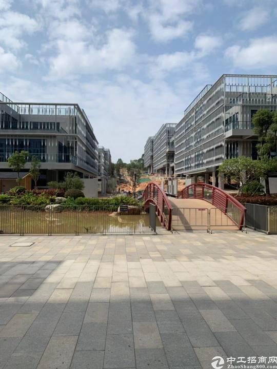 大岭山镇高新科技园出租20000平方可以分租-图2