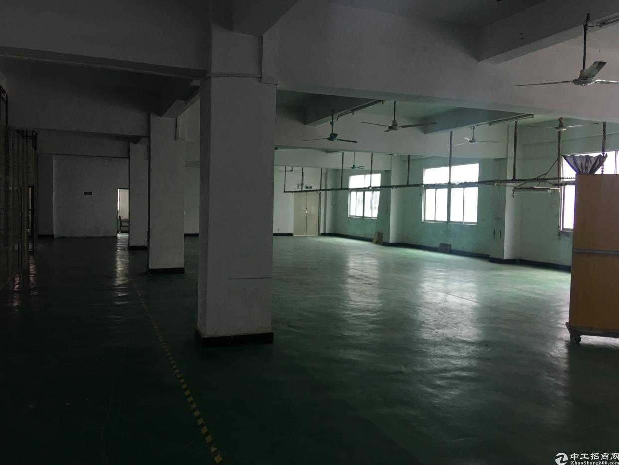 龙岗龙东深汕路边原房东2楼带装修600平标准厂房