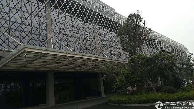 大岭山镇高新科技园出租20000平方可以分租-图3