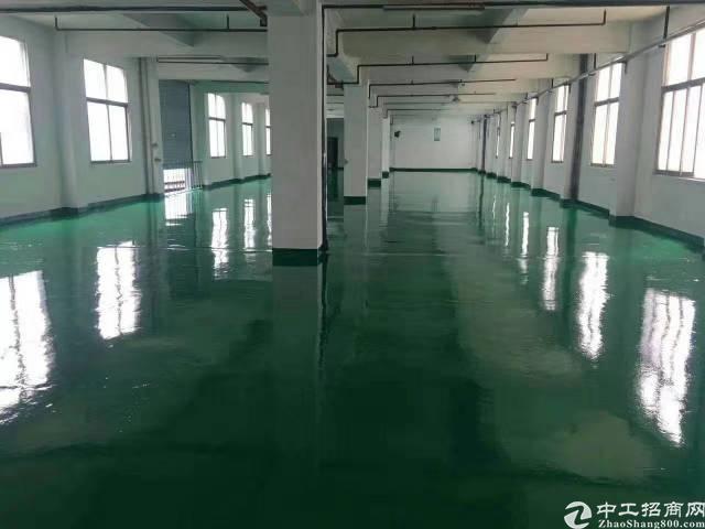 西乡鹤洲全新地坪漆厂房300平米出租