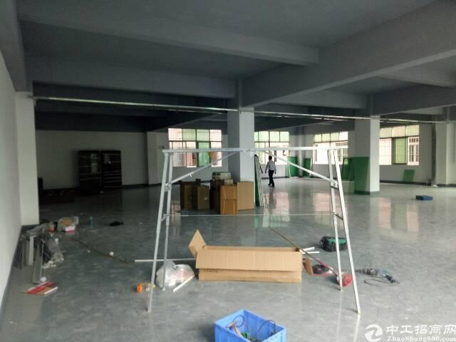 坂田第三工业区新装厂房1250平,